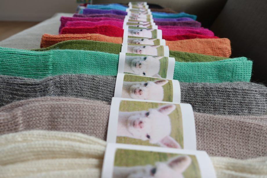 alpaca everyday sock all colours