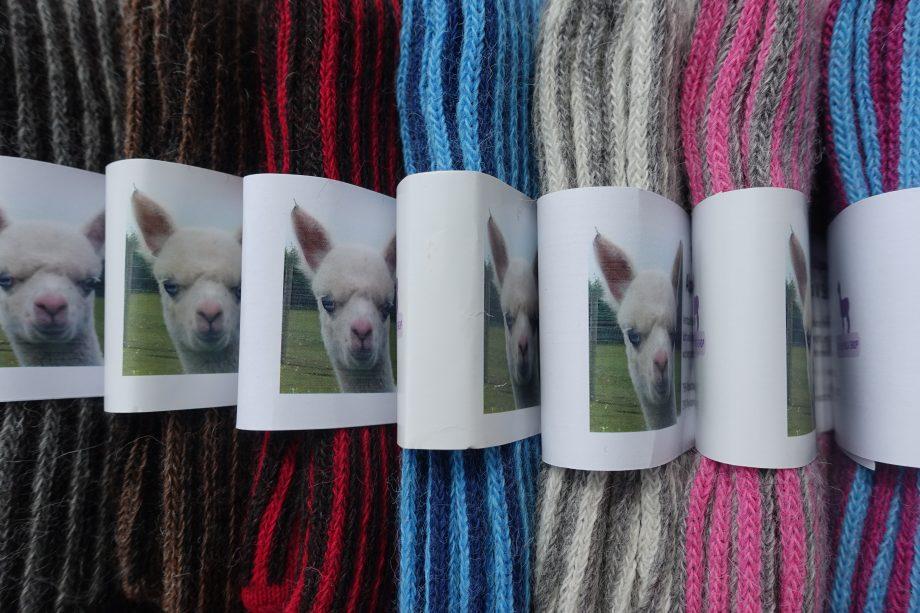 vertical stipe alpaca socks